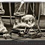 Jazzkalender Schindelbeck 2018 / Ausgabe A
